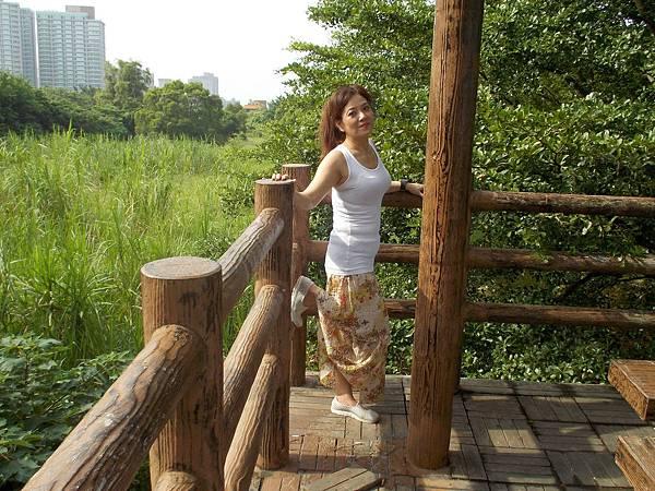 淡水紅樹林