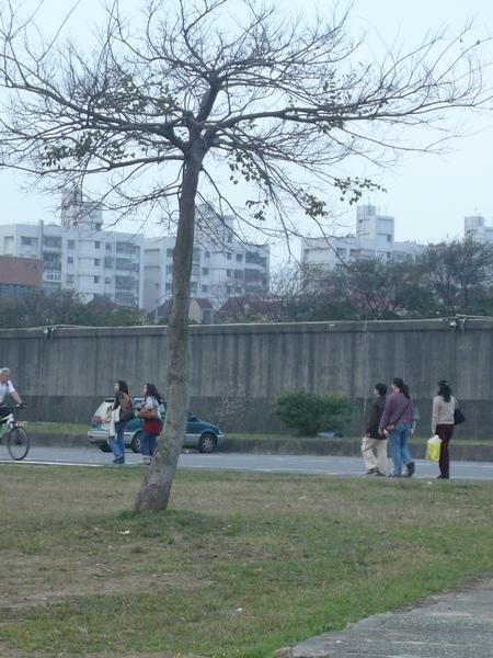 20090131初四賀新春 (23).JPG