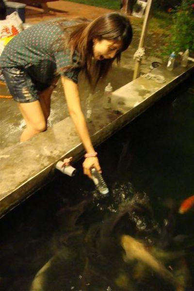 吸奶嘴的鯉魚