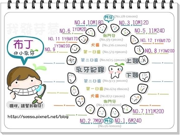 發芽圖-男NO12-13.jpg