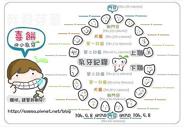 阿餅乳牙圖紀錄-1.2號小白.jpg