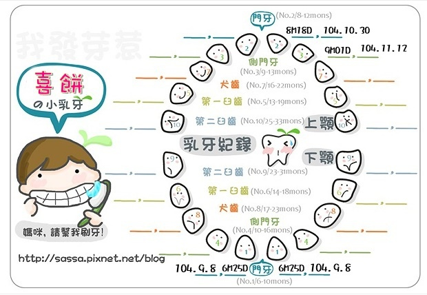 阿餅乳牙圖紀錄-3.4號小白.jpg