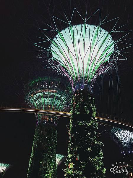 新加坡_175 - 複製.jpg