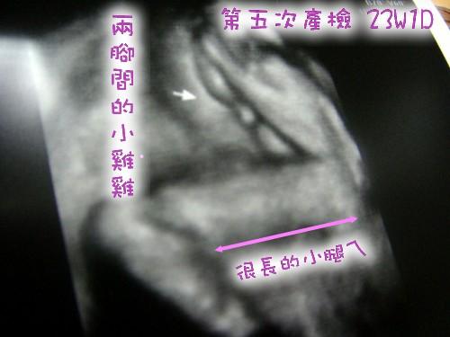 23W1DD.jpg