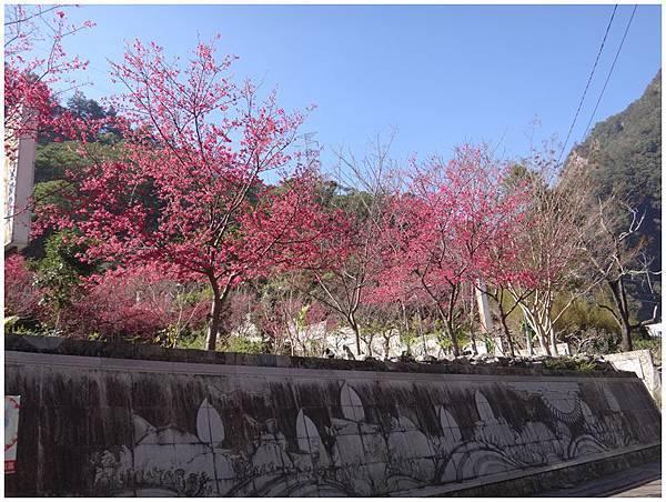 2014-01-17水舞谷觀 (39)