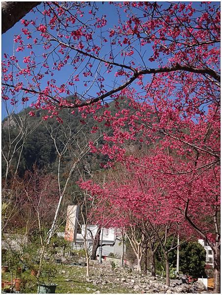 2014-01-17水舞谷觀 (34)