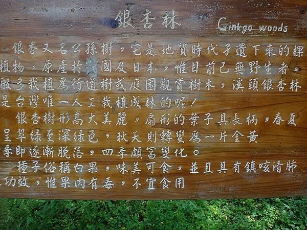 103-10-15溪頭(12).JPG