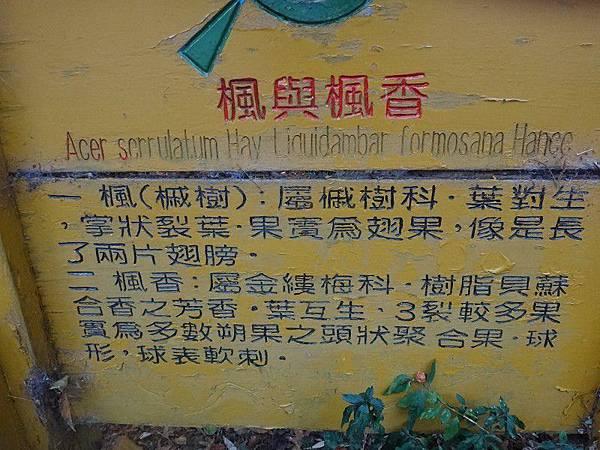 武陵農場103-11-12(179-1).JPG
