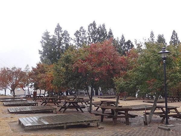 武陵農場103-11-12(188).JPG