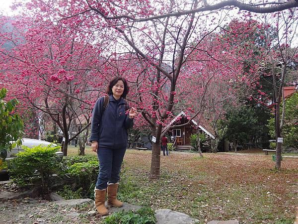 惠蓀林場(48).JPG