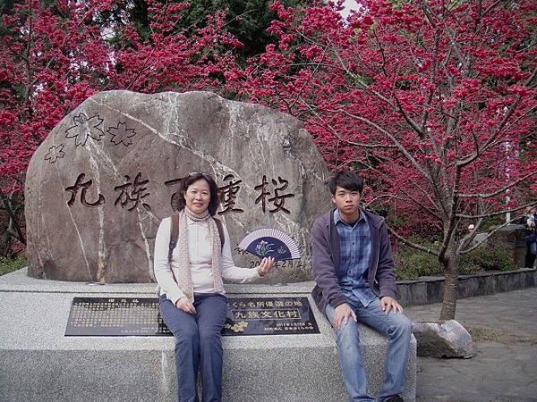 九族櫻花祭(22).JPG