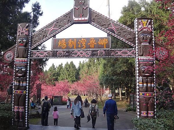 九族櫻花祭(29).JPG