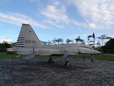 F-5B 自由鬥士戰鬥教練機  Freedom