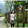 2007.05.18 綠光森林