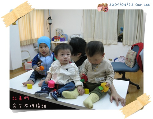 Lab babies >3<