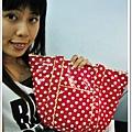 2009.08.06 New Bag