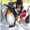 2010/08/20 企鵝身上寫的是 *配對*