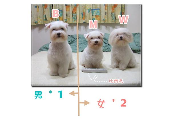 焦糖小姐05.jpg