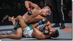 MMA-Elbow-1024x575