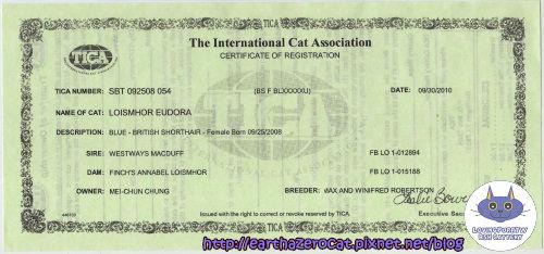 貓隻登錄文件