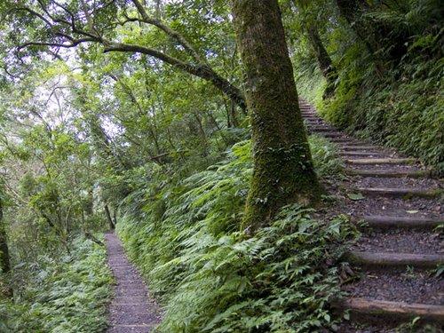 聖母登山步道.jpg