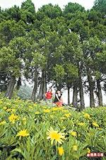 瑪格麗特花園 5.28..jpg