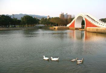 內湖大湖公園 1.16..jpg