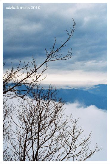 寒冬暖陽的太平山 2.jpg