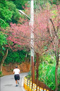 樹林大同山 2.jpg