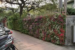 社區變成大花園 2.jpg