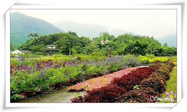 仁山2.jpg