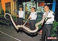 抓蛇像舞龍 3.22..jpg