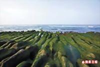 老梅綠石槽奇景 4.25..jpg