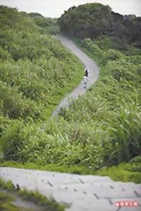 富貴角公園內的步道 4.25..jpg
