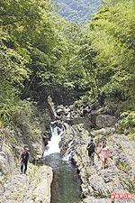 岩岸 綠林夾峙的老鷹溪 6.18..jpg