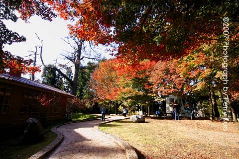 福壽山農場2.jpg
