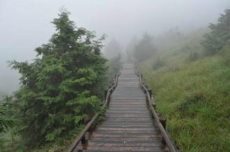 雲霧步道 9.28..jpg