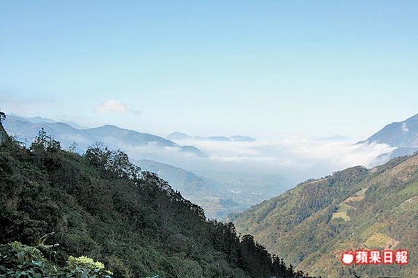 東埔山莊 雲海景觀 12.31..jpg
