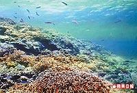 南沙太平島海域 7.17..jpg
