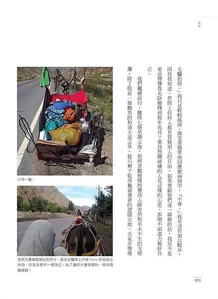 趕著驢車去新疆4.jpg