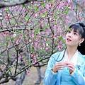 花間提壺方大廚-170804.jpg