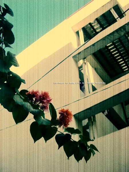 hang_down