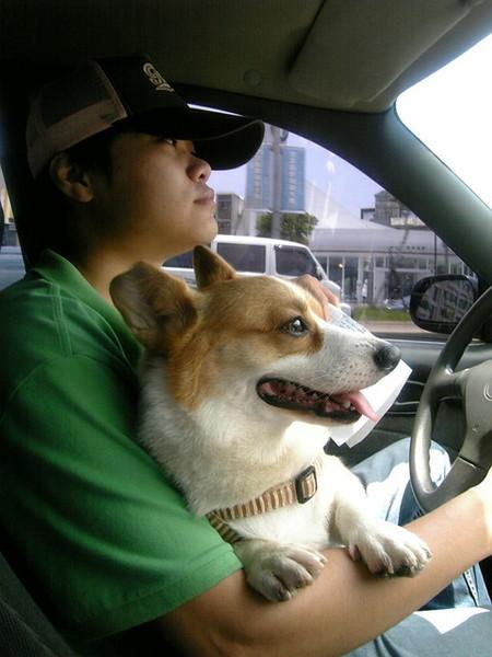 司機~到了沒啊??