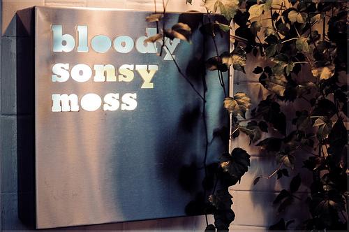 bloody-sonsy-moss