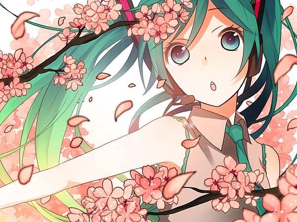 koyubi - Sakura