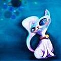 外星貓-布卡 (E.T. Cat).jpg