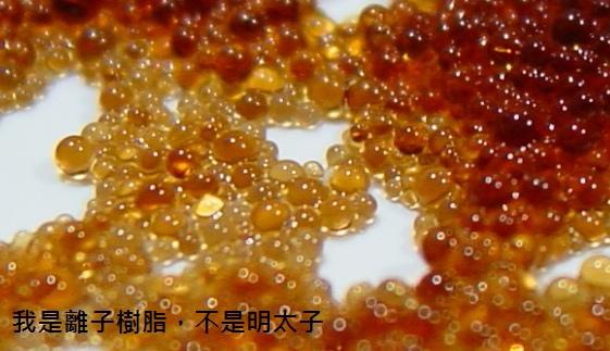離子樹脂1
