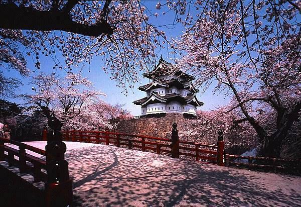 日本留學代辦推薦