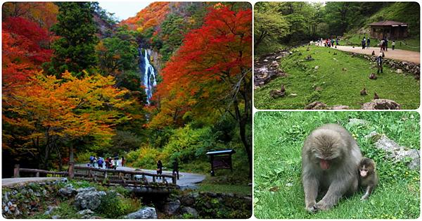 岡山景點推薦神庭瀑布湯原溫泉