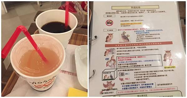 日本福岡東京大阪貓頭鷹咖啡廳網路預約方法網路購票時間免排隊